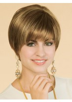 Classic Straight Synthetic Lace Front Wig
